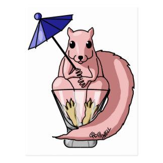 Pink Squirrel Postcard
