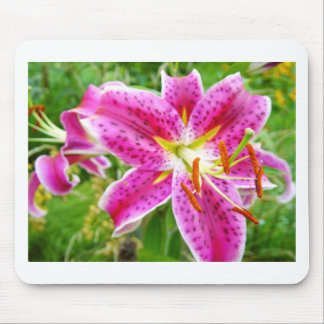 Pink Stargazer Lilly Mouse Pad