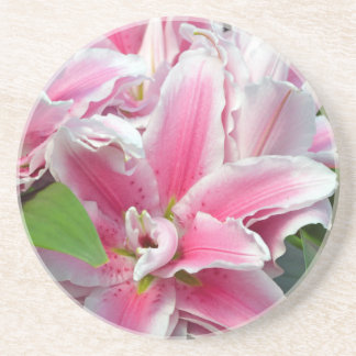 Pink stargazer lily flowers in spring drink coaster