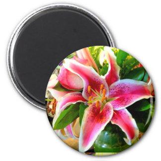 pink stargazer lily magnet magnets