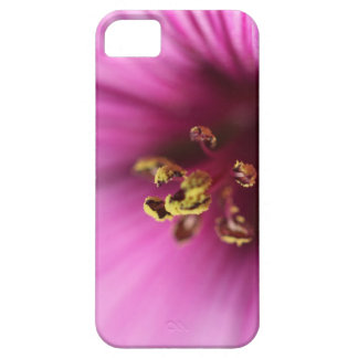 Pink Striped Macro Flower iPhone 5 Cover