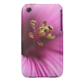 Pink Striped Macro Flower Case-Mate iPhone 3 Case