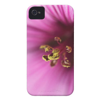 Pink Striped Macro Flower Case-Mate iPhone 4 Cases