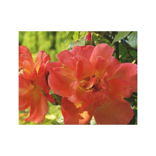 Pink Summer Roses Flower Photo Single Print