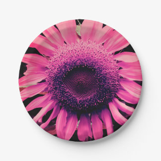 Pink Sunflower Paper Plate