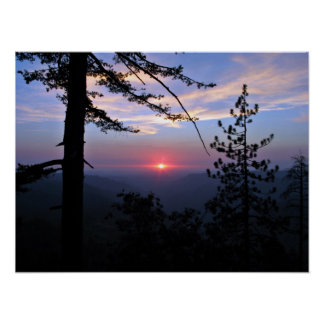 Pink sunset with pine trees and clouds poster