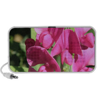 Pink Sweet Pea Portable Speakers