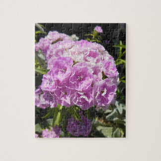 Pink Sweet William Floral Puzzle