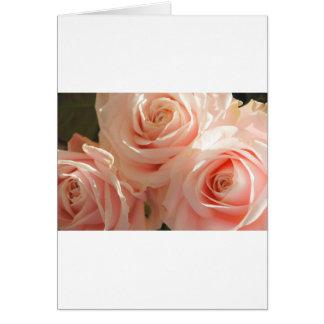 pink tea roses card