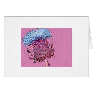 pink thistle card