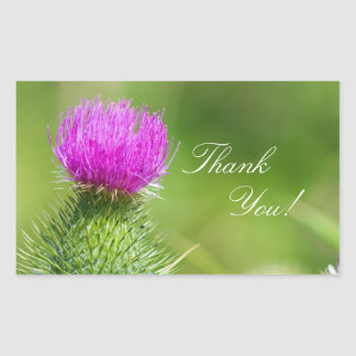Pink Thistle flower thank you stickers