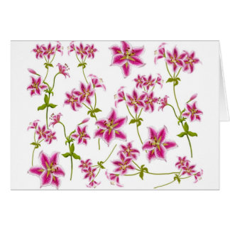 Pink Tiger Lilies Greeting Card