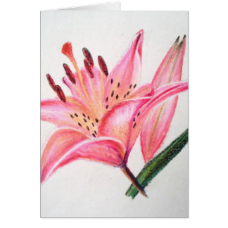 Pink Tiger Lily - Oil pastel print Greeting Card