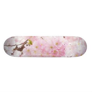 Pink Tree Cherry Blossom 20.6 Cm Skateboard Deck