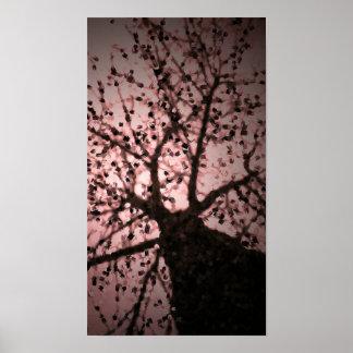 Pink Tree Photo Art Poster