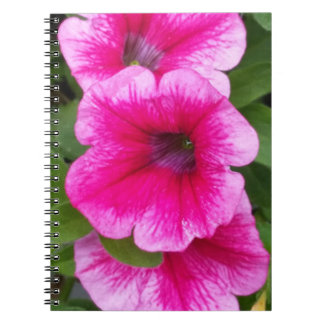 Pink Trio Blossom Notebook (80 Pages B&W)