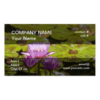pink tropical water lilies business card