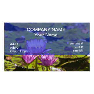 pink tropical water lilies Double-Sided standard business cards (Pack of 100)