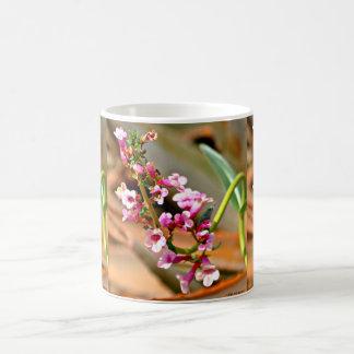 Pink Trumpet Flower Coffee Cups