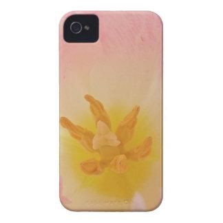 Pink Tulip BlackBerry Bold Case
