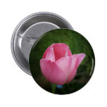 Pink Tulip Button