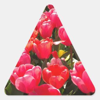 Pink Tulip Garden Triangle Sticker