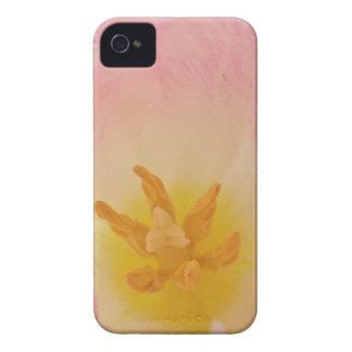 Pink Tulip iPhone 4 Case Mate