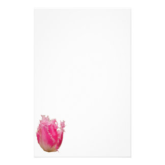 Pink Tulip Stationery Paper
