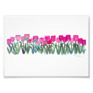 "Pink Tulips 7""x 5"", Kodak Prof Photo Paper (Satin)"