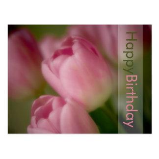 Pink Tulips Birthday Postcard