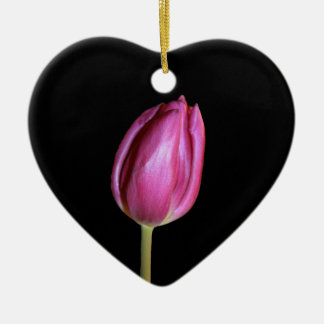 Pink Tulips Blank Background Flowers Floral Photos Christmas Ornament