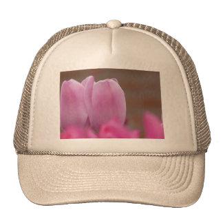 Pink tulips cap