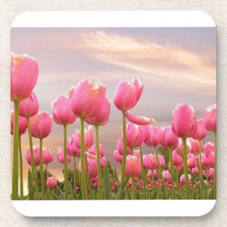 Pink Tulips Beverage Coasters