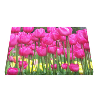 Pink Tulips Floral Canvas Print