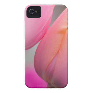 Pink Tulips iPhone 4 Case-Mate Case