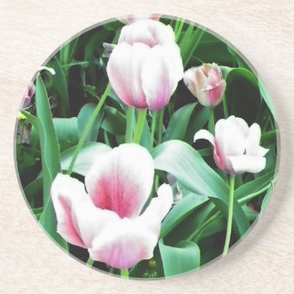 Pink Tulips Picture Beverage Coasters