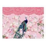 Pink vintage floral elegant lace colourful peacock postcard