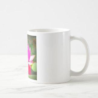 Pink Water Lilly on Pond Coffee Mug