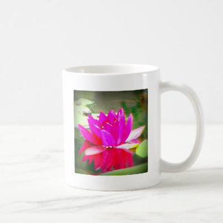 Pink Water Lilly on Pond Mugs