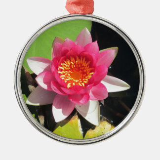Pink water Lilly photograph Silver-Colored Round Decoration