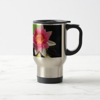 Pink water Lilly photograph Stainless Steel Travel Mug