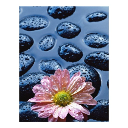 Pink water lily against blue stones full color flyer