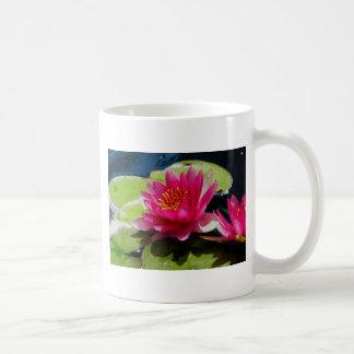 Pink Water Lily Basic White Mug