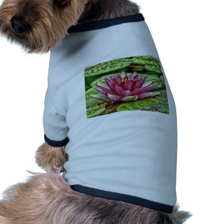 Pink Water Lily Pet T-shirt