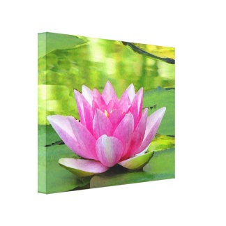 Pink Water Lily Lotus Flower on Green Canvas Print