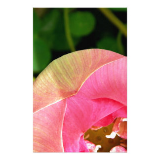 PInk Water Lily Lotus Customised Stationery