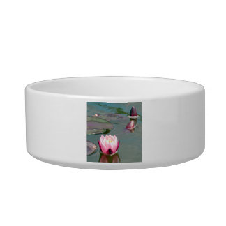 Pink water lily pet bowls