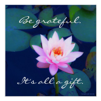 Pink water lily with gratitude saying