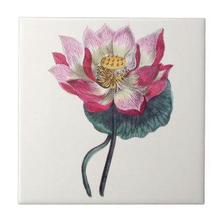 Pink Water Lotus Botanical Ceramic Tile