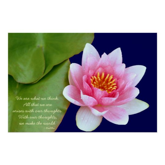 Pink Waterlily With Buddha Quote Poster